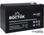Аккумулятор для ИБП Восток СК-1207 (12В/7.2 А·ч)