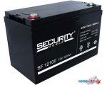 Аккумулятор для ИБП Security Force SF 12100 (12В/100 А·ч)