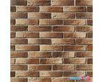 Декоративный кирпич Royal Legend Шамбор 200х50 (09-205)