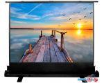Проекционный экран CACTUS FloorExpert 113x200 CS-PSFLE-200х113