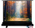 Проекционный экран CACTUS FloorExpert 150x200 CS-PSFLE-200X150