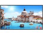 Информационный дисплей Prestigio PDSIK43WNN0L