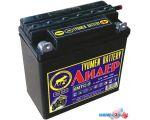Мотоциклетный аккумулятор Tyumen Battery Лидер 6МТС-9 (9 А·ч) в интернет магазине