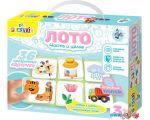 Развивающая игра Десятое королевство 10KOR Plastic Лото Часть и целое 04016