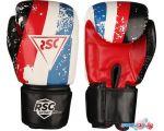Перчатки для единоборств RSC Sport Hit PU SB-01-146 (8 oz, белый/красный/синий)