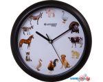 Настенные часы Bresser Junior (белый/черный)