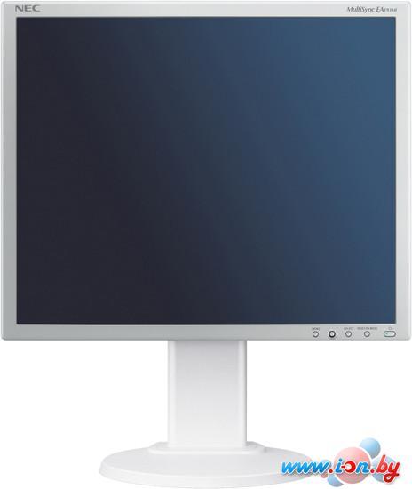 Монитор NEC MultiSync EA193Mi Silver/White в Могилёве