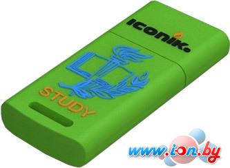 USB Flash Iconik Flash Drive Для учебы 8GB (RB-STUDY-8GB) в Могилёве