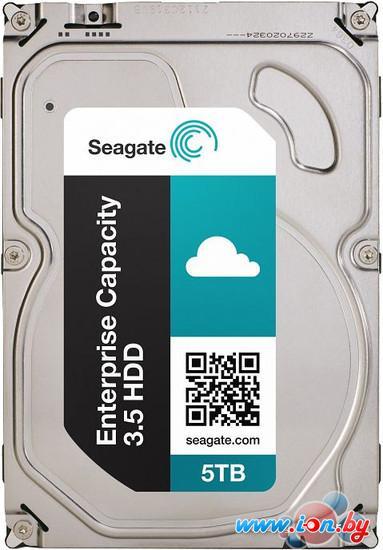 Жесткий диск Seagate Enterprise Capacity 5TB (ST5000NM0084) в Могилёве