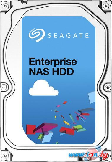 Жесткий диск Seagate Enterprise NAS 3TB (ST3000VN0001) в Могилёве