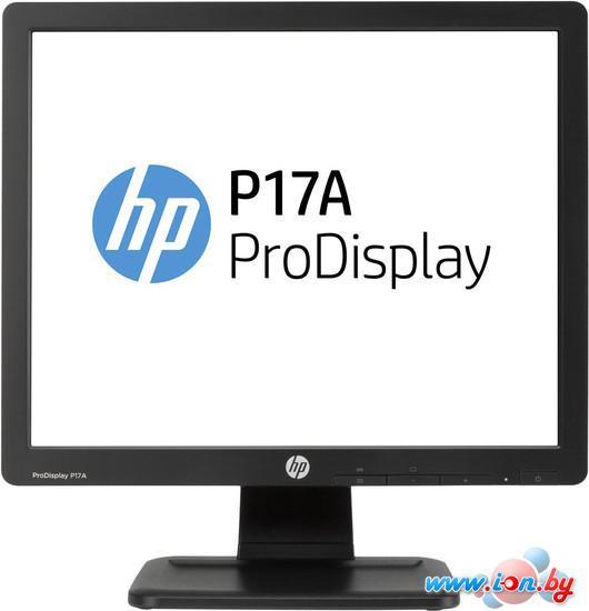 Монитор HP ProDisplay P17A [F4M97AA] в Могилёве
