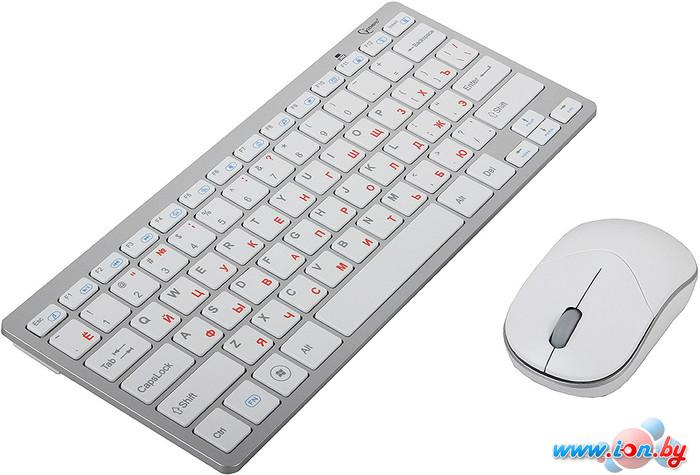 Мышь + клавиатура Gembird KBS-7001 в Могилёве