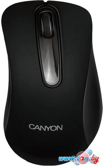 Мышь Canyon CNE-CMSW2 в Могилёве