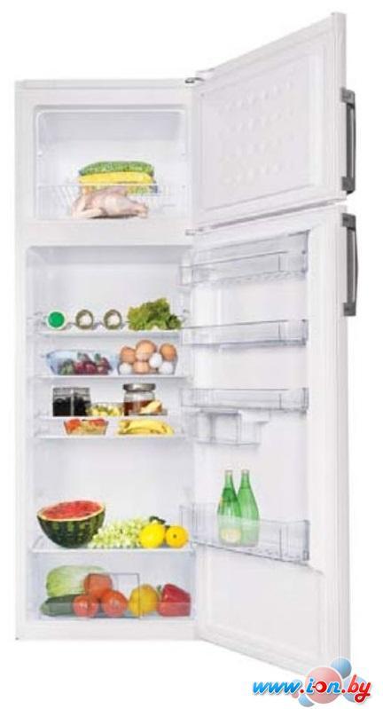 Холодильник BEKO DS333020S в Могилёве