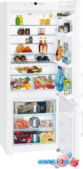 Холодильник Liebherr CN 5113 в Могилёве