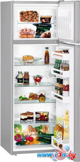 Холодильник Liebherr CTPsl 2921 Comfort в Могилёве