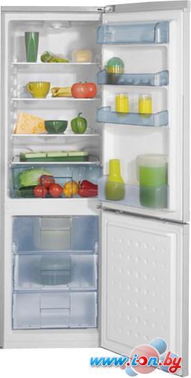 Холодильник BEKO CS328020S в Могилёве
