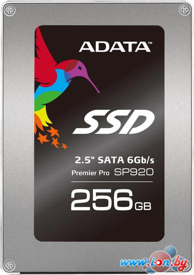 SSD A-Data Premier Pro SP920 256GB (ASP920SS3-256GM-C) в Могилёве