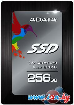 SSD A-Data Premier SP610 256GB (ASP610SS3-256GM-C) в Могилёве