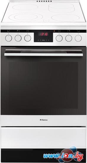 Кухонная плита Hansa FCCW58225 в Могилёве