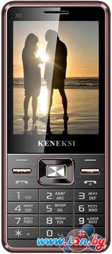 Мобильный телефон Keneksi X5 в Могилёве