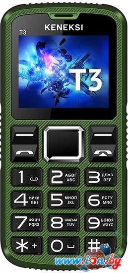 Мобильный телефон Keneksi T3 Green в Могилёве