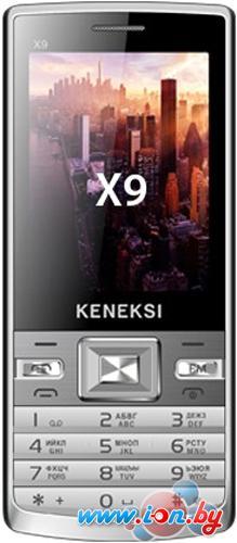 Мобильный телефон Keneksi X9 White в Могилёве