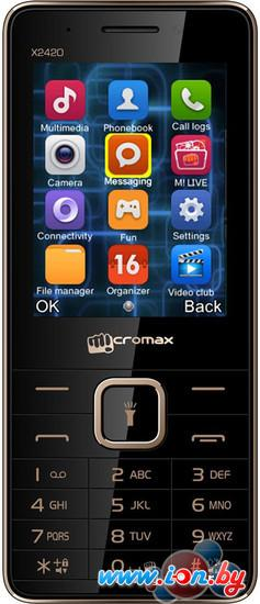 Мобильный телефон Micromax X2420 в Могилёве