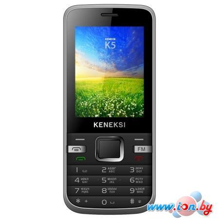 Мобильный телефон Keneksi K5 Black в Могилёве