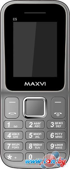 Мобильный телефон Maxvi C5 Gray в Могилёве