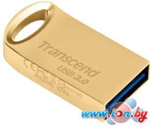 USB Flash Transcend JetFlash 710 Gold 32GB (TS32GJF710G) в Могилёве