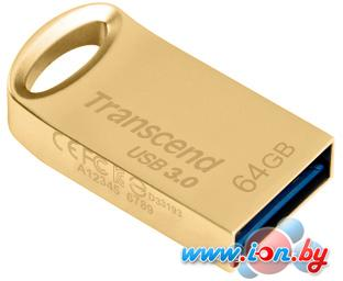 USB Flash Transcend JetFlash 710 Gold 64GB (TS64GJF710G) в Могилёве