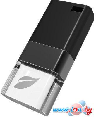USB Flash Leef Ice Black 32GB (LFICE-032BLR) в Могилёве