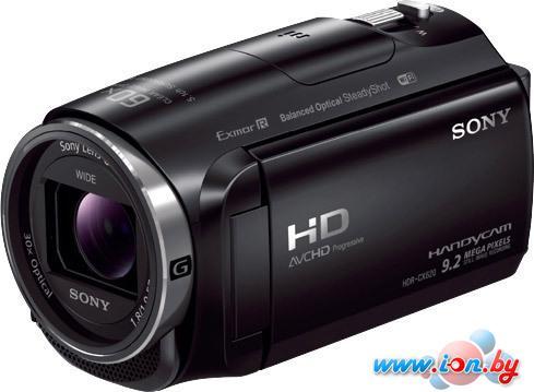 Видеокамера Sony HDR-CX620 в Могилёве
