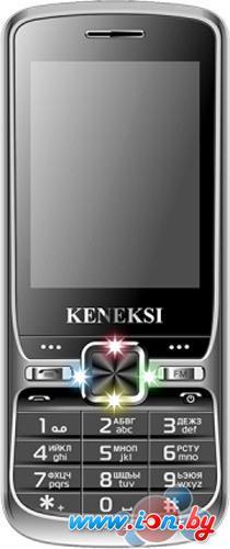 Мобильный телефон Keneksi S2 в Могилёве