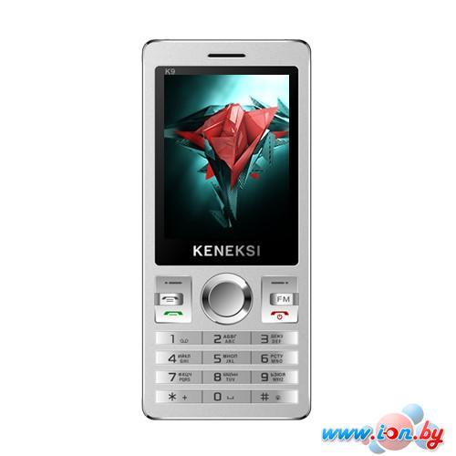 Мобильный телефон Keneksi K9 Black в Могилёве