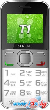 Мобильный телефон Keneksi T1 в Могилёве