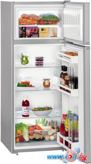 Холодильник Liebherr CTPsl 2521 Comfort в Могилёве