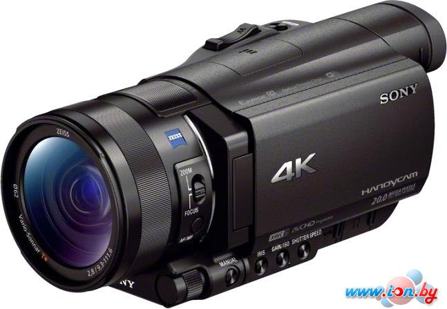 Видеокамера Sony FDR-AX100E в Могилёве