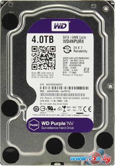 Жесткий диск WD Purple NV 4TB (WD4NPURX) в Могилёве
