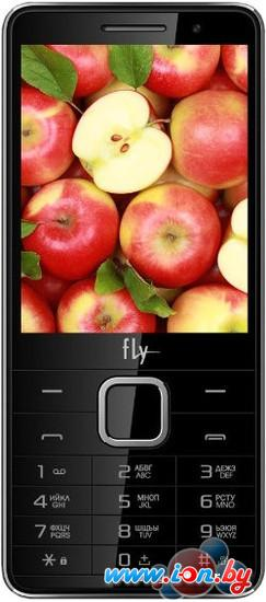 Мобильный телефон Fly FF301 Black в Могилёве