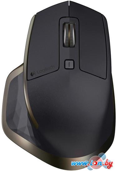 Мышь Logitech MX Master (910-004362) в Могилёве
