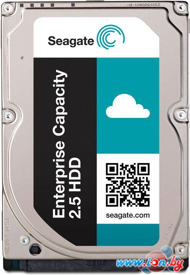 Жесткий диск Seagate Enterprise Performance 300GB (ST300MP0005) в Могилёве