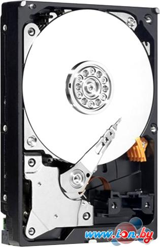 Жесткий диск HP 300GB (652611-B21) в Могилёве