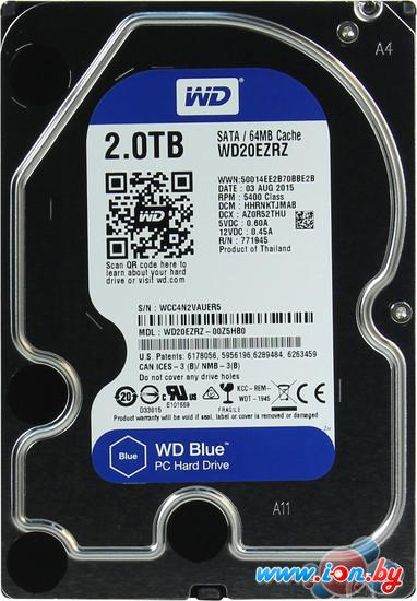 Жесткий диск WD Blue 2TB (WD20EZRZ) в Могилёве