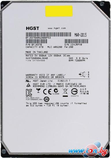 Жесткий диск Hitachi Ultrastar He6 6TB [HUS726060ALS640] в Могилёве