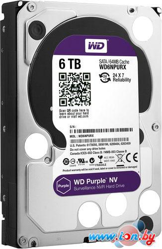 Жесткий диск WD Purple NV 6TB [WD6NPURX] в Могилёве