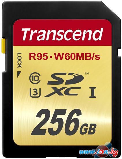 Карта памяти Transcend SDXC UHS-I U3 (Class 10) 256GB (TS256GSDU3) в Могилёве