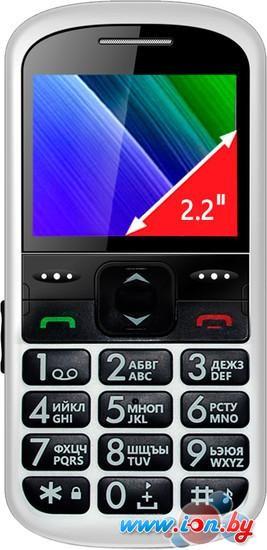 Мобильный телефон Ginzzu R12D White в Могилёве