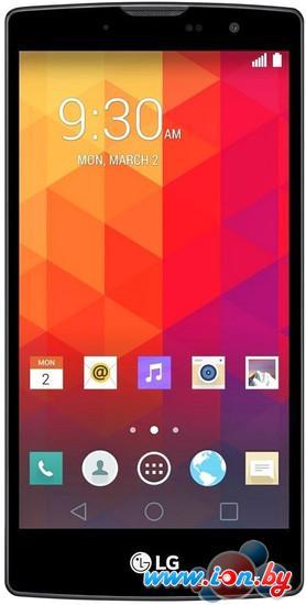 Смартфон LG Magna Titan [H502F] в Могилёве